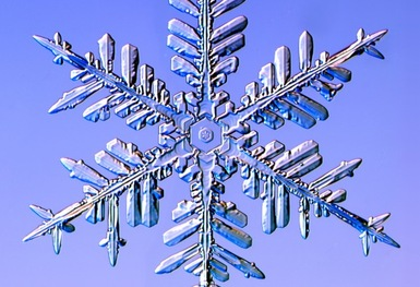 Article and Images of real Snow Flakes