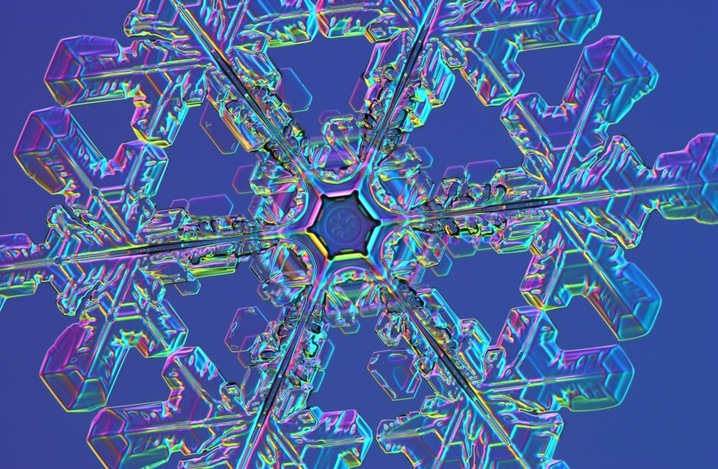 The Science of Winter: Snowflakes