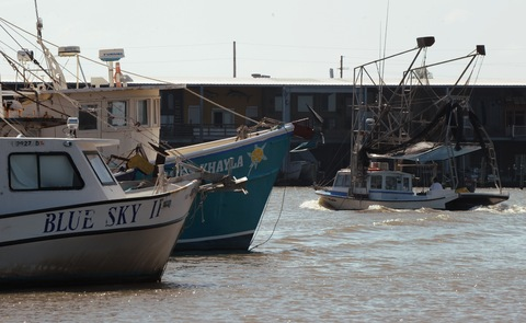 Fishing boats near Venice, La.; AFP/Getty