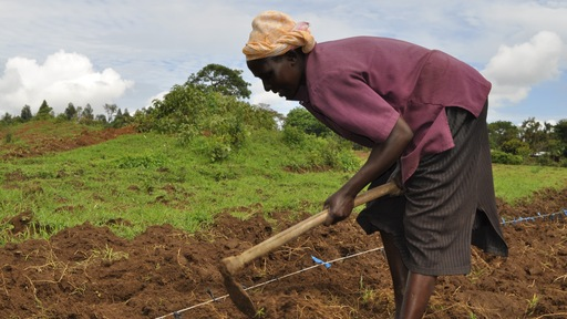 Farmer working in Kenya. Photo Courtesy of One Acre Fund