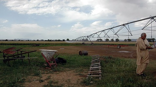 Example of Pakistan's government-subsidized irrigation system. Photo by Alexis Matsui