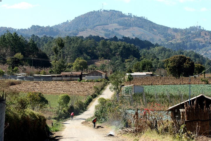 Farmlands of Guatemala