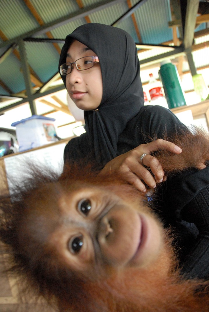 Orangutan and Caretaker