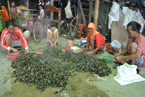 A group of women and a young girl shell mussels in Kalibaru