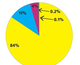Test your knowledge of wealth distribution by exploring pie charts of different societies.