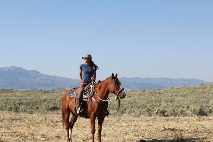 Cattle Ranch Management