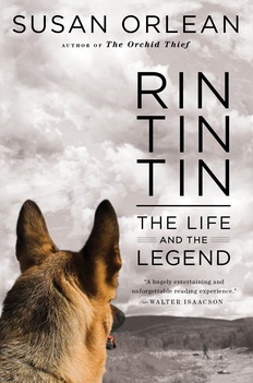 Rin Tin Tin