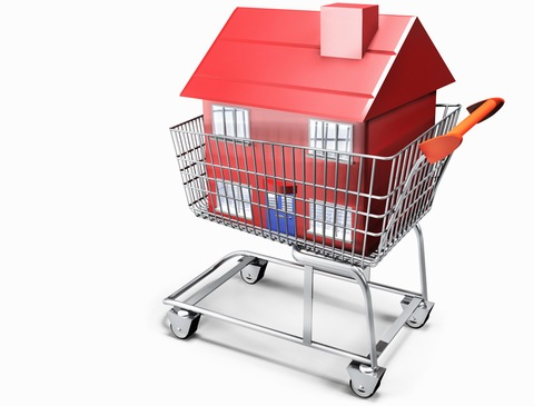A house in a shopping cart