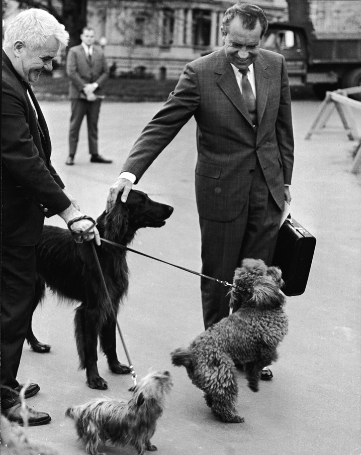 Nixon's King
