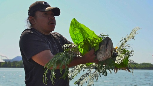 Swinomish fishermen offers a salmon carcass in thanks. NewsHour photo by Saskia de Melker