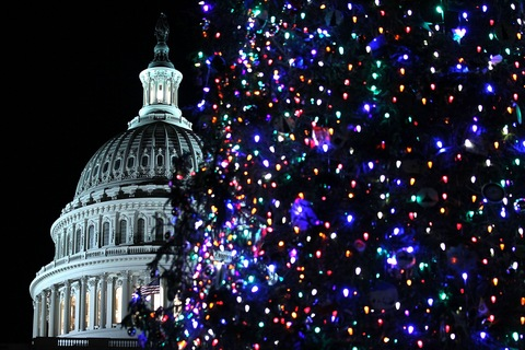 The 2012 Capitol Christmas Tree; photo by Alex Wong/Getty Images