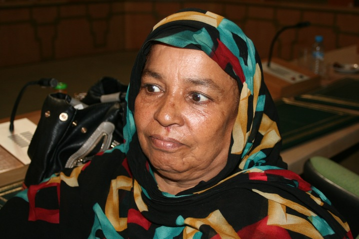 Sahrawi Representation