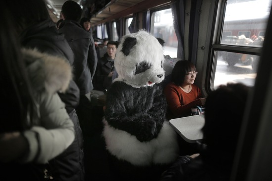 Woman in panda costume; photo by AFP/Getty Images