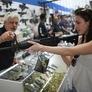 With Procedural Hurdle Cleared, Senate Begins Gun Debate