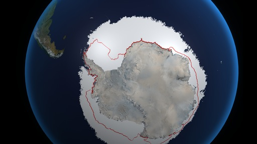 The Antarctic's Ice Paradox