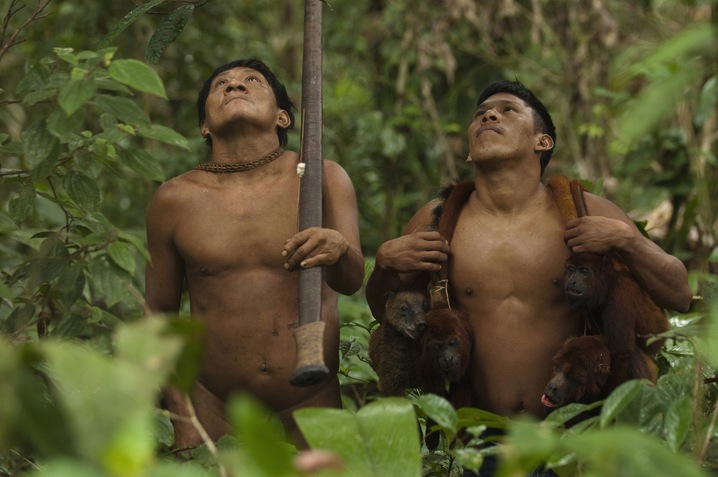 Huaorani Call Rainforest Home