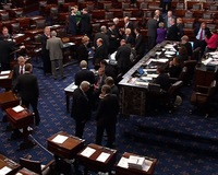 Senate Votes Unanimously to Take Up Debate on Budget Bill After Cruz 'Talkathon'