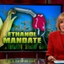 EPA weighs environmental consequences of ethanol with proposed cuts