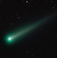 Will Comet ISON survive a Thanksgiving roasting?