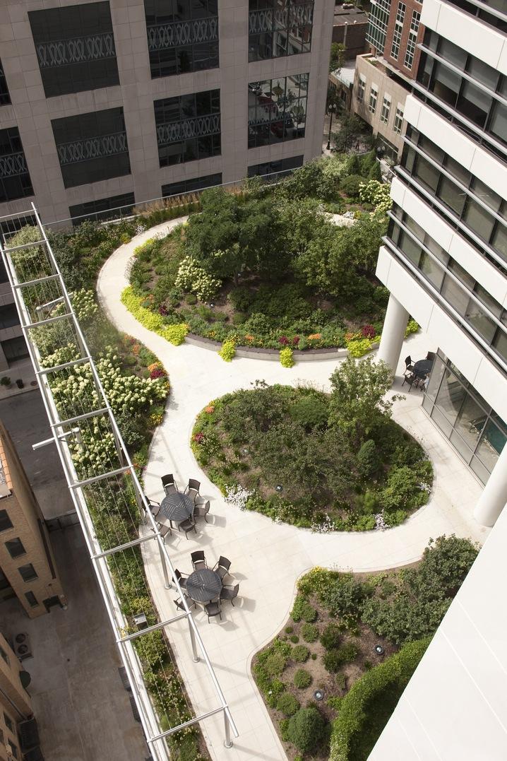 Telhados Verdes 7 Projetos Inspiradores Fotos Portal